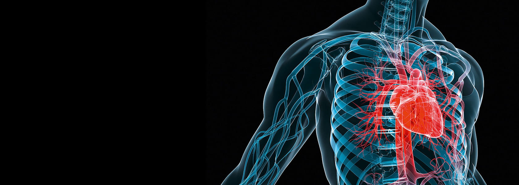 Инструменты и оборудование для сердечно-сосудистой хирургии от KLS Martin