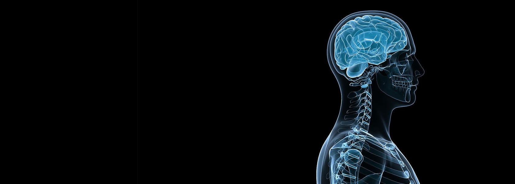 Оборудование и инструменты для нейрохирургии от KLS Martin
